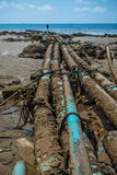 Environmental Pollution on the Beach in Thailand Royalty Free Stock Photo