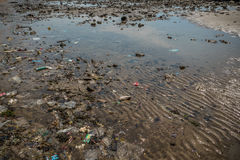 Environmental Pollution on the Beach in Thailand Royalty Free Stock Images