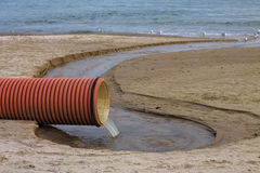 Environmental pollution on the beach. Waste pipe or drainage polluting environment. Birds drink waste water royalty free stock photo