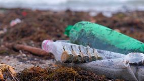 Plastic bottles, died crabs, animal remains and other debris among the seaweed on the sandy seashore after storm. Environmental pollution by plastic and death stock video footage