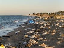 Environmental problem. Ecological catastrophe on Red sea. Hurgada. Egypt Royalty Free Stock Photo