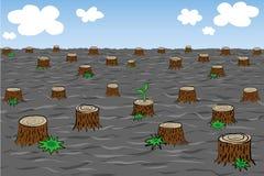 Environmental problem of deforestation Stock Images