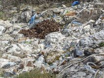 Environmental problem. Wastes which contaminate soils Royalty Free Stock Photos
