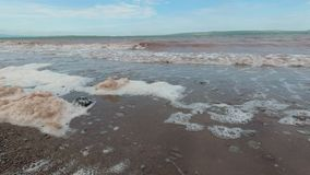 Environmental problems, foam is formed in the water.  stock video