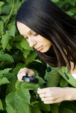 Environmental protection Royalty Free Stock Photography
