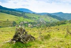 Environmental protection Royalty Free Stock Photo