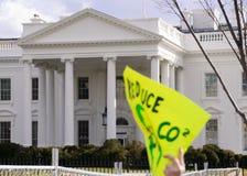 Environmental protester waves Stock Photos