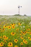 Landscape Meadow Wildflowers and windmill Royalty Free Stock Photo