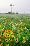 Landscape Meadow Wildflowers and windmill Royalty Free Stock Photos