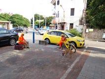 Environmental sanitation worker Stock Photography
