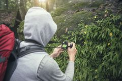 Environmental scientist photographing researching the environment and natural diversity. stock photo