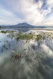 Environmental shot of the lake Batur. Royalty Free Stock Images