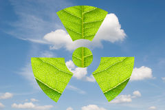 Environmental Sign. Fresh leaves in the form of radioactivity sign against the sky Stock Image