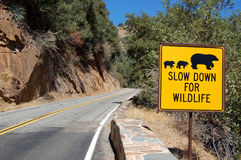 Environmental Sign. An environmental sign on a road passing through a forest, asking the drivers to slow down to avoid hitting any wild animals Stock Images