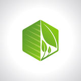 Environmental symbol leaves in hexagonal shape Stock Photography