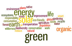 Environmental Word Cloud in Green. Organic Green Movement Word Cloud in Earth Tones Royalty Free Stock Images