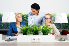 Environmentalists Discussing In Office Royalty Free Stock Photos