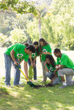 Environmentalists gardening in park Royalty Free Stock Photo
