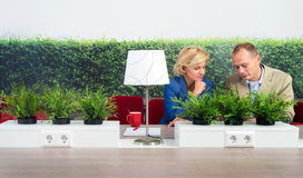 Environmentalists Working At Desk In Office Royalty Free Stock Image