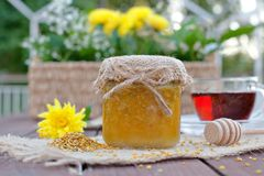 Environmentally-friendly honey in glass jars Stock Photo