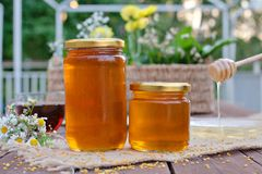 Environmentally-friendly honey in glass jars Royalty Free Stock Photography