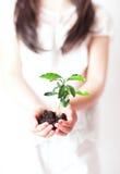 Environmentally friendly Stock Photos