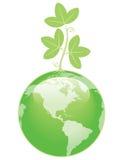 Environmentally Green Royalty Free Stock Image