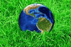 Environnement Photos libres de droits
