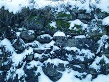 environnement d'hiver Image libre de droits