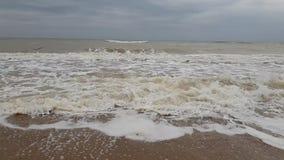 Environnement de mouvement lent de tempête de vague de ‹d'†de ‹d'†de mer ambiant banque de vidéos