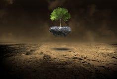 Environnement, environnementalisme, arbre, désert, nature, surréaliste photographie stock