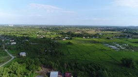 Environnement vert chez Sabah Malaysia banque de vidéos