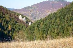 Environs de Vrchpodziar dans les trous de Janosik au village de Terchova photographie stock libre de droits