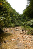 Environs of tropical river. Valley of river in North Vietnam stock photo