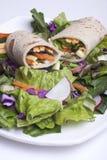 Envoltório do Veggie e uma salada. Imagens de Stock