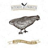 Envoyez à la boucherie l'emblème de vintage de Shop, chiken les produits carnés, style de calibre de logo de boucherie rétro La c Photographie stock libre de droits