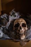 Envoyez de la mort Photographie stock