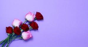 Envoyez ? des fleurs le concept en ligne La livraison de fleur pour la valentine et la f?te des m?res Bouquet des roses roses rou photos libres de droits