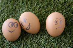 Envy egg face. With happy couple faces eggs Royalty Free Stock Photography