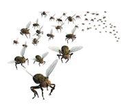 Enxame das moscas Fotografia de Stock