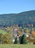 Enzkloesterle,黑森林,德国 免版税库存图片