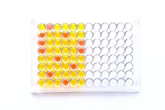 Enzyme-linked immunosorbent assay plate. Immunology testing method in laboratory royalty free stock photography