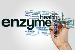 Enzyme word cloud concept on grey background Stock Image