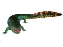Eogyrinus Tetrapod Body. Eogyrinus was a aquatic predatory tetrapod that lived in the Carboniferous Period of England royalty free illustration