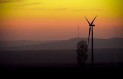 Eolian Energy. Eolian park at sunset light stock photo