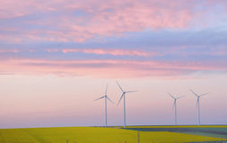Eolian field and wind turbines Stock Image