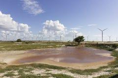 Eolic公园在Guamare, RN,巴西 库存照片