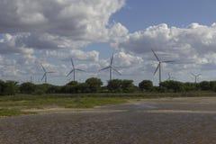 Eolic公园在Guamare, RN,巴西 免版税图库摄影