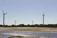 Eolic公园在Guamare, RN,巴西 免版税库存图片