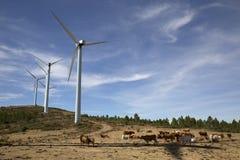 Eolic在一台现代风车的风轮机为可选择能源一代种田 免版税库存照片